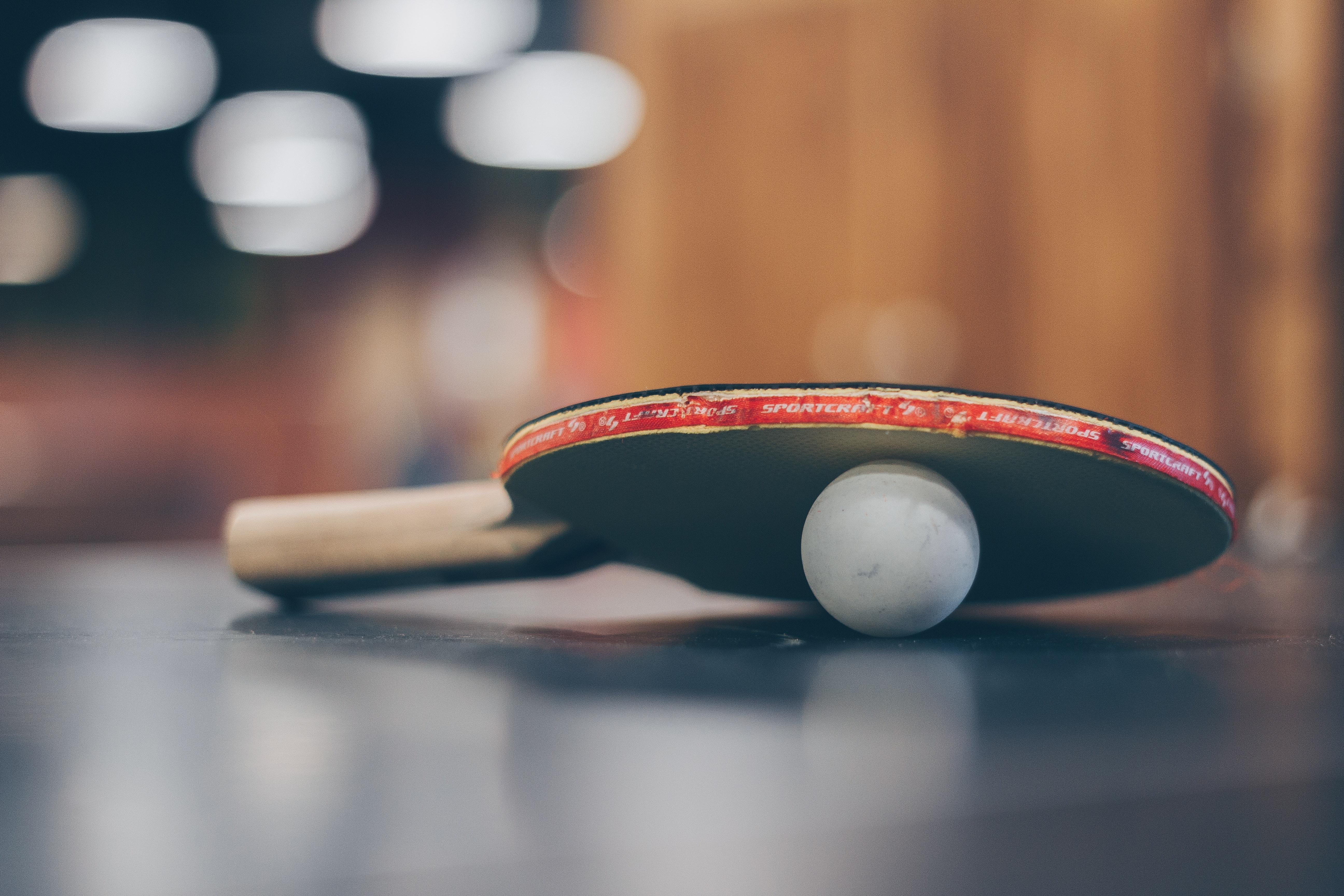 Bordtennisbat og udendørs bordtennisbord til sporten hos HomeX.dk